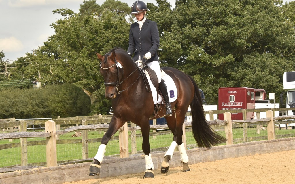 Dressage results: Colgate Dressage (Priory), Surrey, 14 October