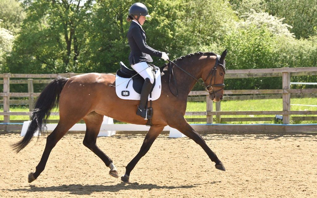 Dressage results: Parwood, Surrey, 25 October