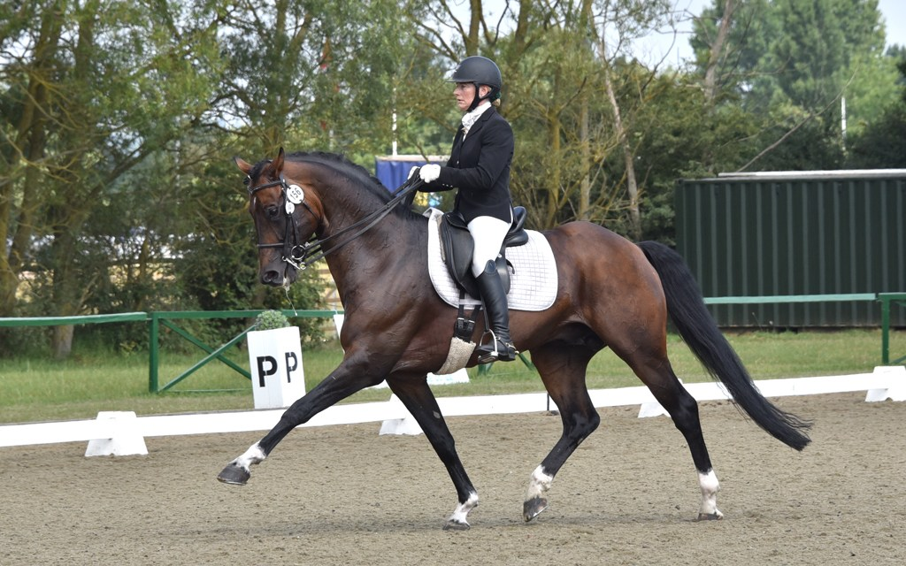 Dressage results: Oldencraig, Surrey, 26 October (TBC)