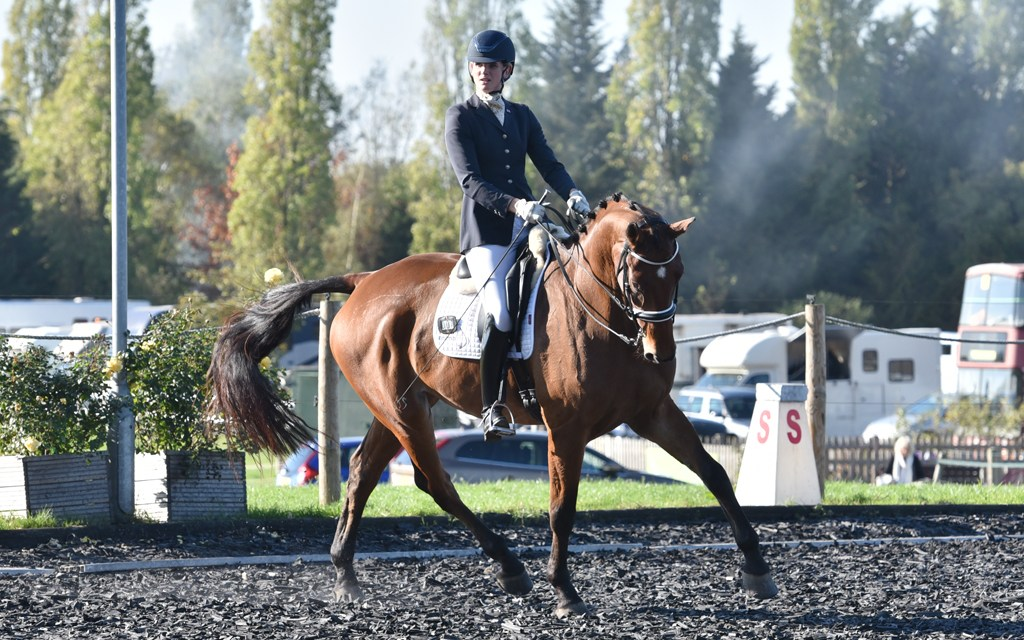 Dressage results: Pachesham, Surrey, 20 October