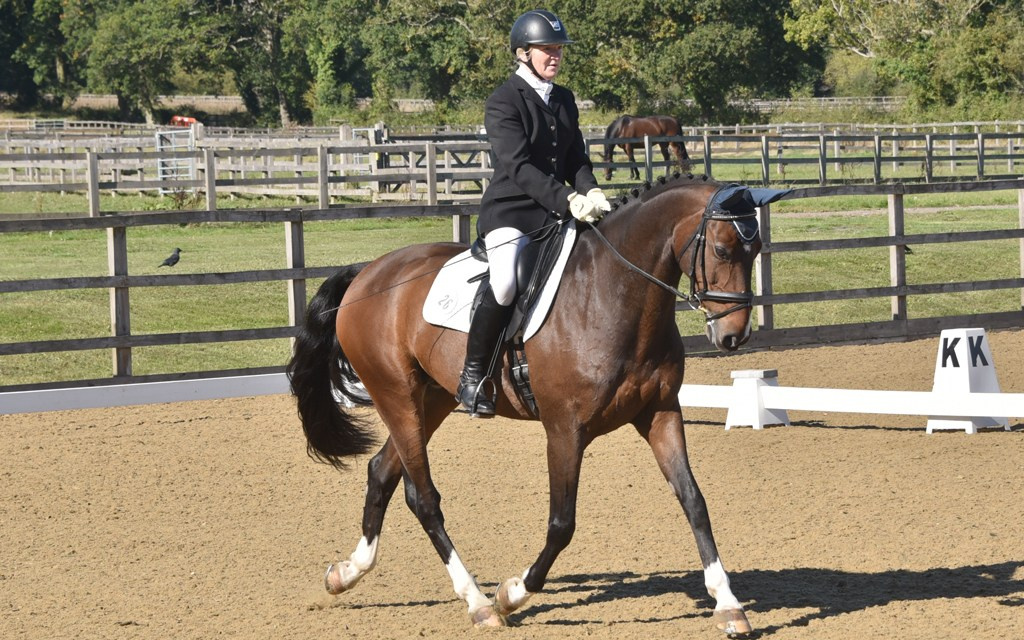 Dressage results: Parwood, Surrey, 22 November
