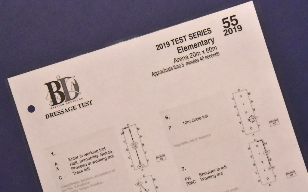 Elementary 55 (2019) analysed — an appreciation of fluency and harmony
