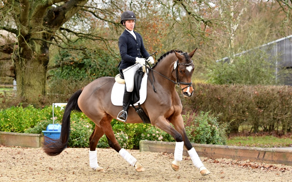 Dressage results: Step Aside (Belmoredean), West Sussex, 6 December