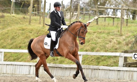 Variety is the spice of Kent equestrian life