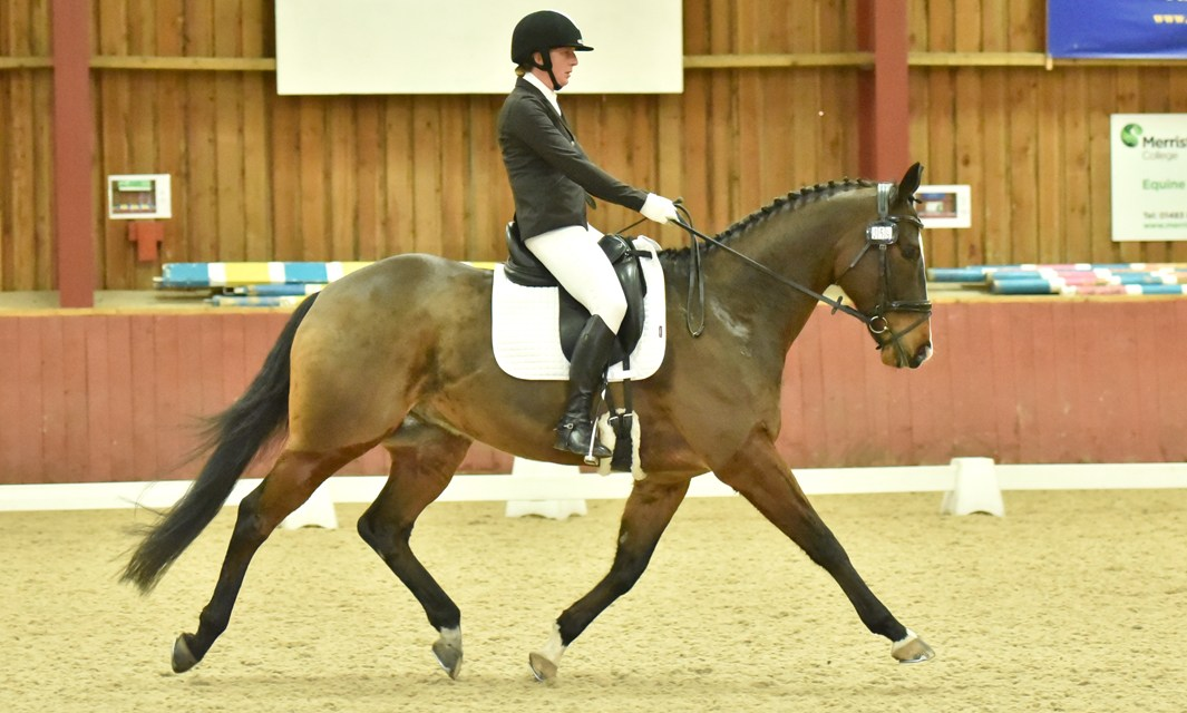 Dressage results: Merrist Wood, Surrey, 26 January