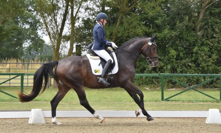 Dressage results: Merrist Wood, Surrey, 27 January