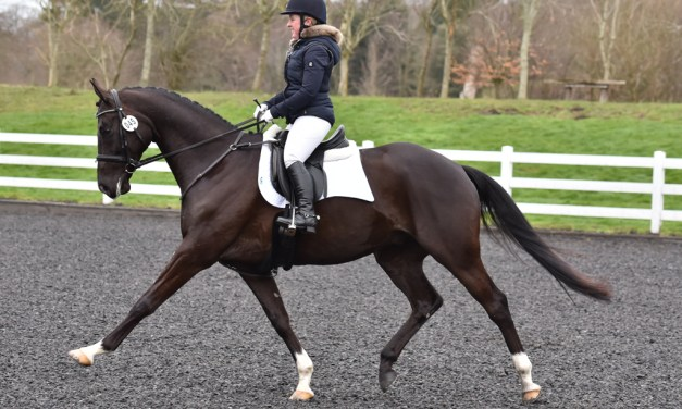 Dressage results: Merrist Wood, Surrey, Winter Regional Championships — 20 February