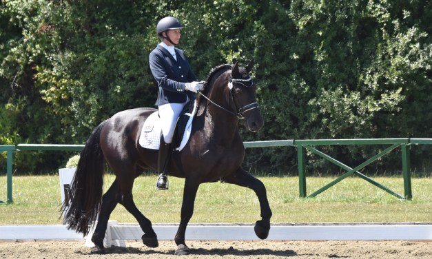 Dressage results: Merrist Wood, Surrey, Winter Regional Championships — 21 February