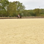 Blue Barn arena expansion fuels High Profile ambitions