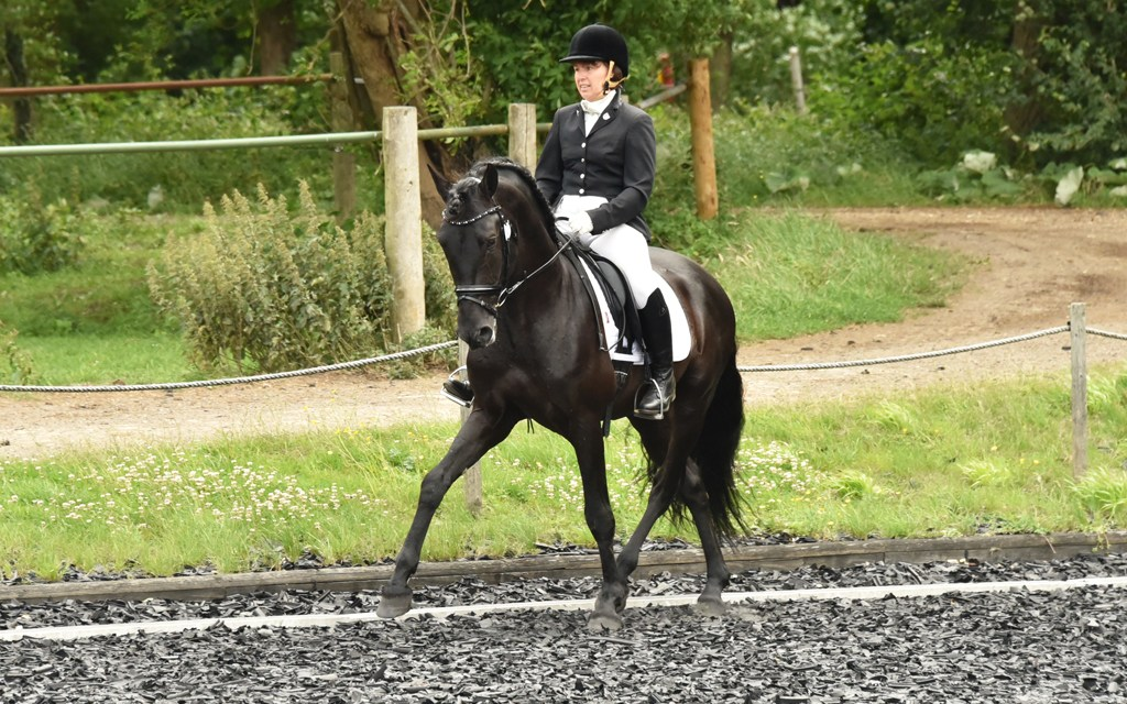 Dressage results: Petley Wood, East Sussex, 12 May 2019