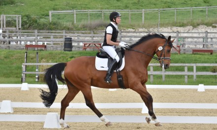 Dressage results: Brendon Stud, West Sussex, 24 May 2019