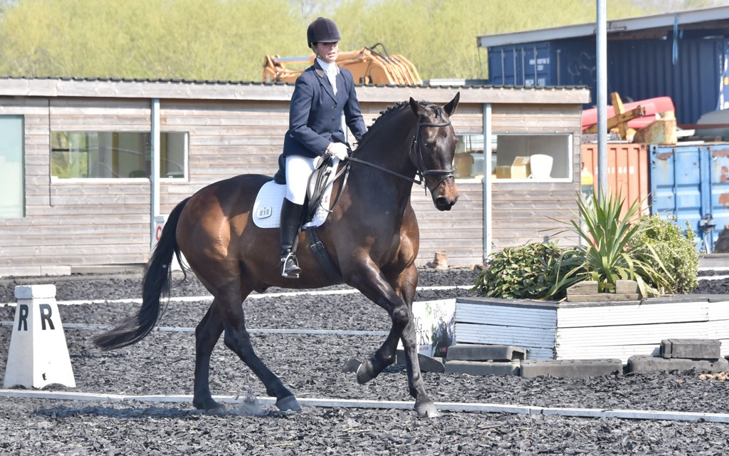 Dressage results: Oldencraig, Surrey, 11 May 2019