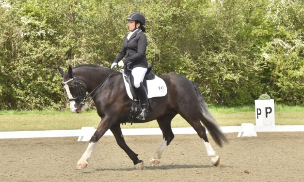Dressage results: Step Aside (Belmoredean), West Sussex, 8 June 3019