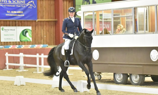 Small arenas provide a testing environment for big dressage talent