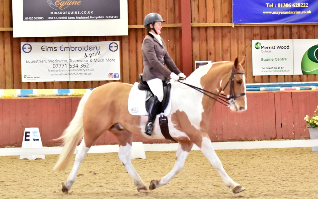 Cobs not just warmbloods capture the dressage marks