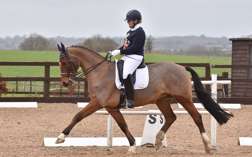 Dressage results: Crofton Manor, Hampshire, 7 March 2020