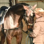 The horse that made a classical trainer out of a cowboy rider