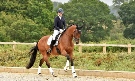 Dressage results: Saddlesdane, Kent, 25 July 2020