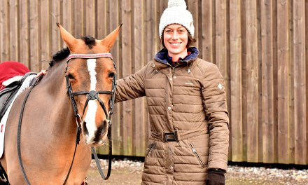 The horses that made Sparsholt's Emma Mansfield a successful rider and show organiser
