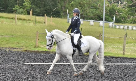 Dressage results: Merrist Wood, Surrey, 1 August 2020