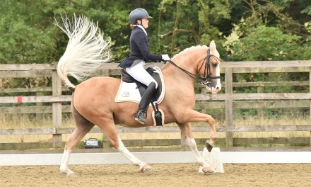 Dressage results: Sparsholt, Hants, 19 September 2020