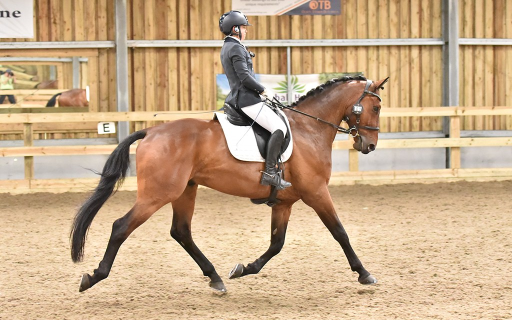 Dressage results: Saddlesdane, Kent, 17 September 2020
