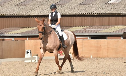 Dressage results: Felbridge, Surrey, 18 September 2020