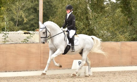 Dressage results: Felbridge, Surrey, 25 September 2020