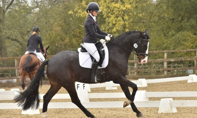 Dressage results: Parwood, Surrey, 29 October 2020