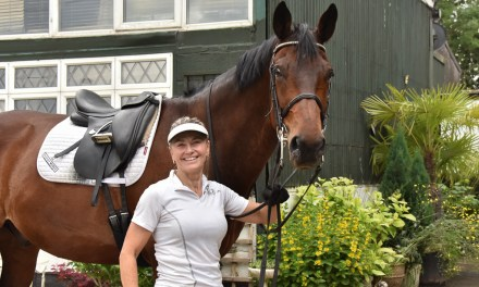 Dressage results: Pachesham, Surrey, 31 October 2020