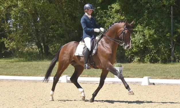 Dressage results: Wellington Riding, Hants, 14 December 2020