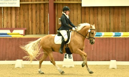 Dressage results: Felbridge, Surrey, 4 December 2020