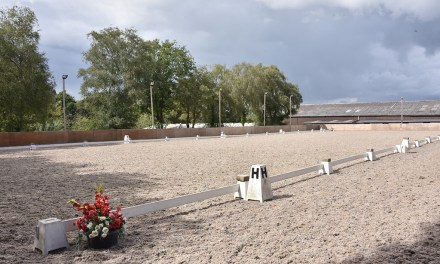 Dressage competition survey responses are rolling in day by day!