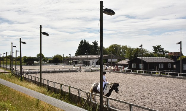 Dressage riders rush to book up for some hectic show action