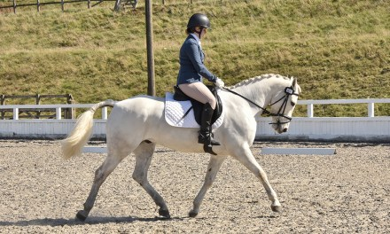 Dressage results: Speedgate, 7 January 2021