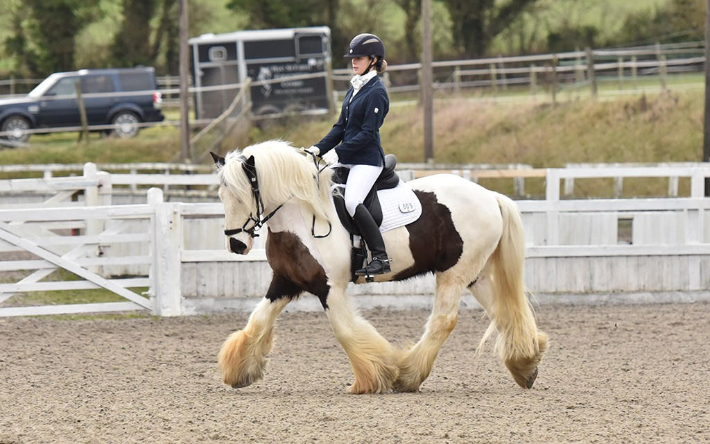 Dressage results: Petley Wood, East Sussex, 30 May 2021