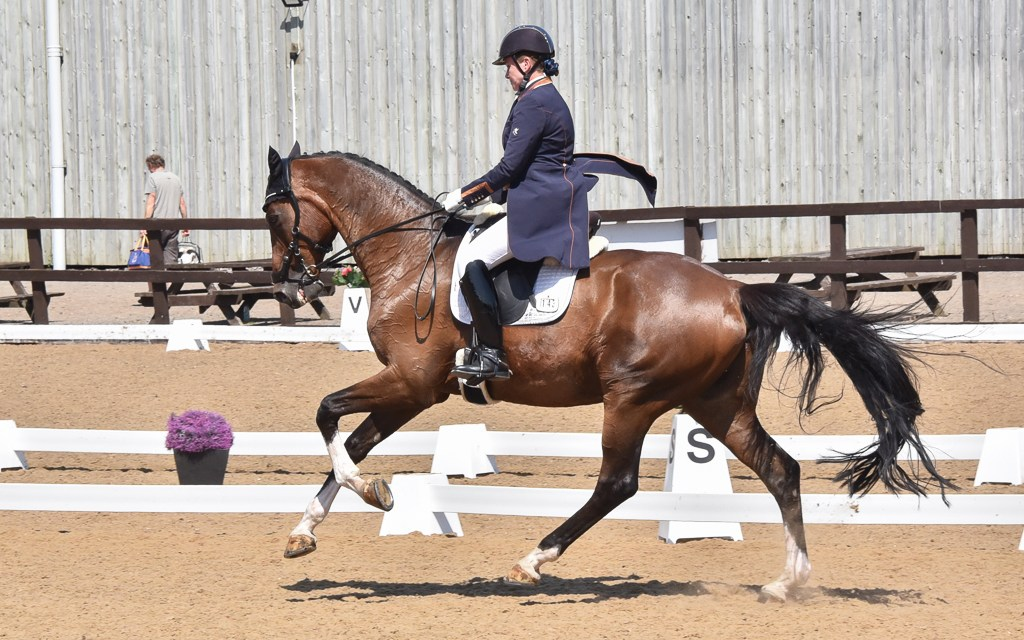 'Dark horse' wins Inter I gold at Sparsholt summer regionals by a country mile