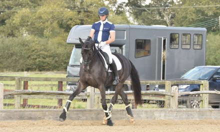 Glamour from seniors and promise from younger riders and horses