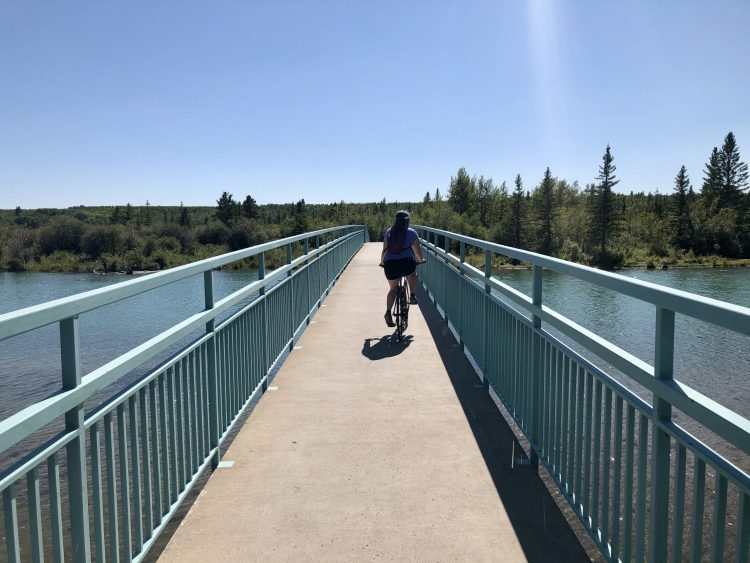 Bike Path in Calgary's Weaselhead Flats