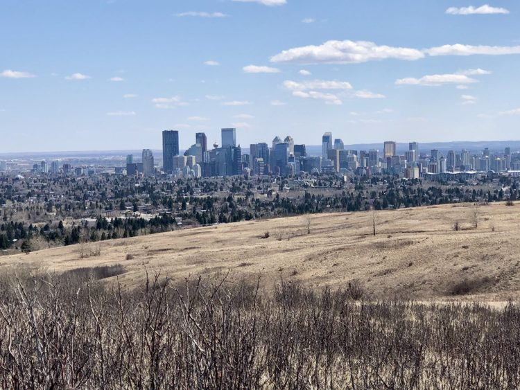 Downtown Calgary from Nose Hill Park