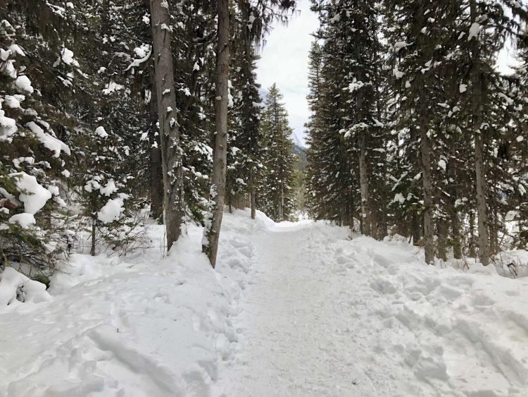 Rawson Lake hiking trail