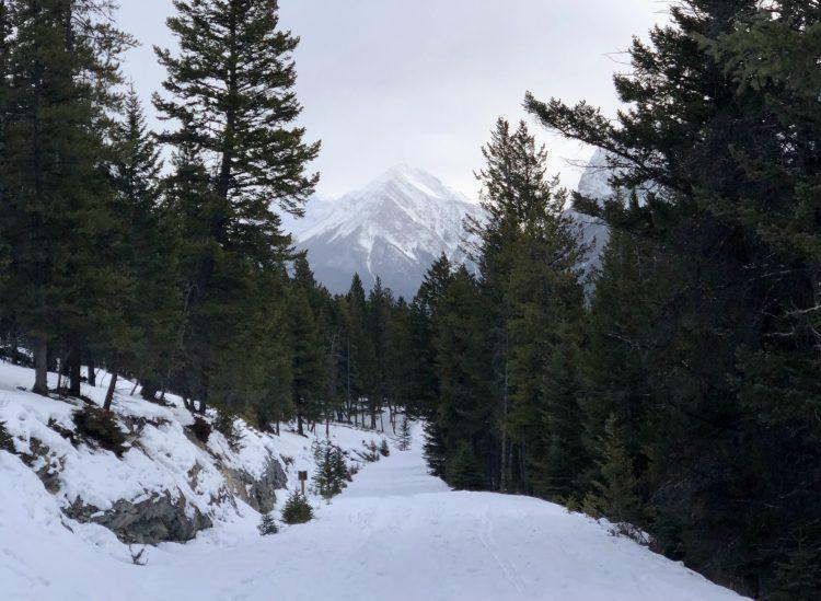 The Tunnel Mountain trailhead