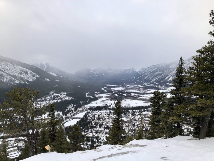 The view of Banff from Tunnel Mountain hike