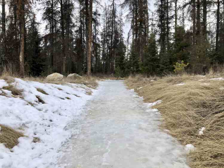 Icy trail at Valley of the Five Lakes hike