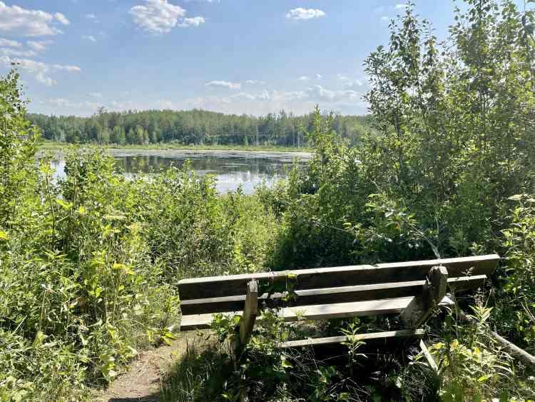 Elk Island hike bench views