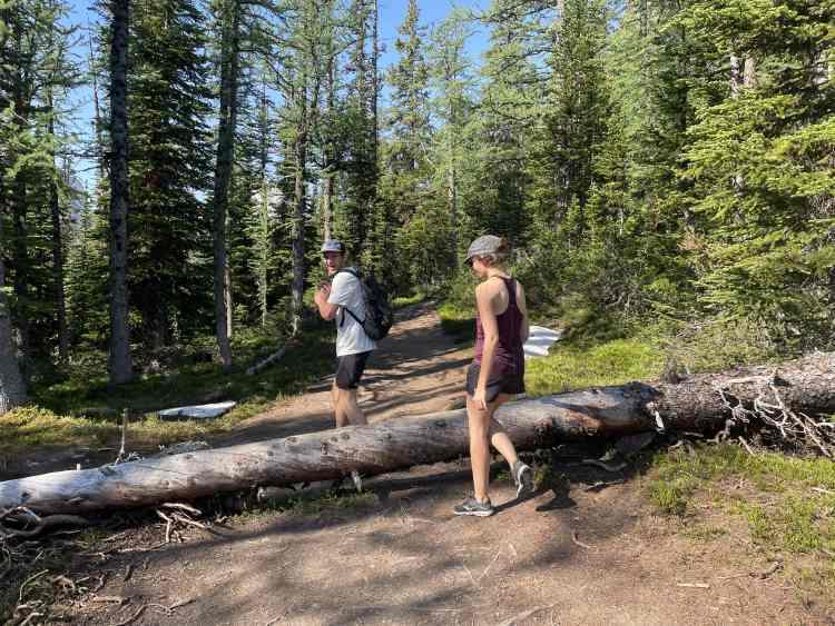 Devil's Thumb hike trail