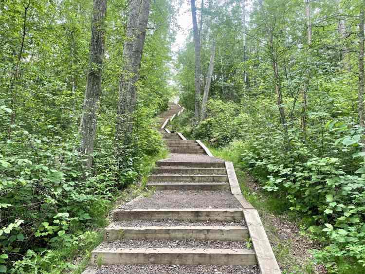 Devon River Valley Trail stairs