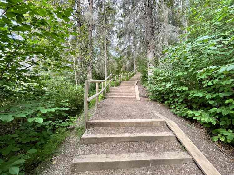 Devon River Valley Trail has 295 stairs
