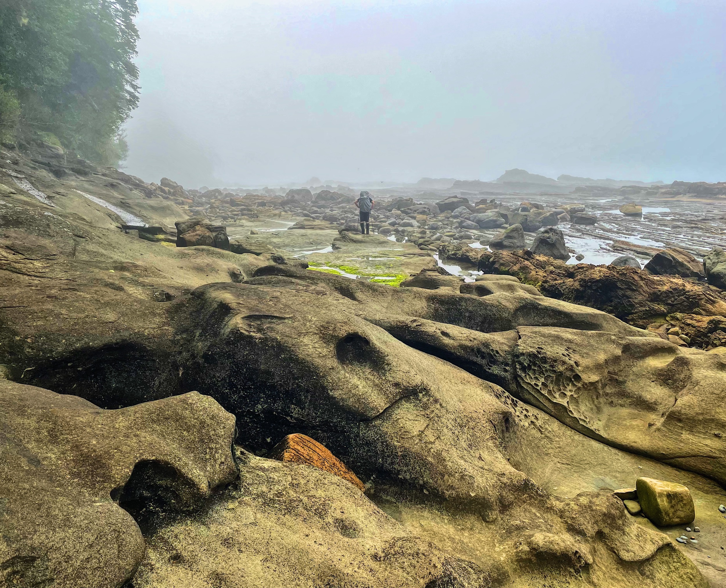 Your Complete Guide to Hiking the West Coast Trail via @outandacross