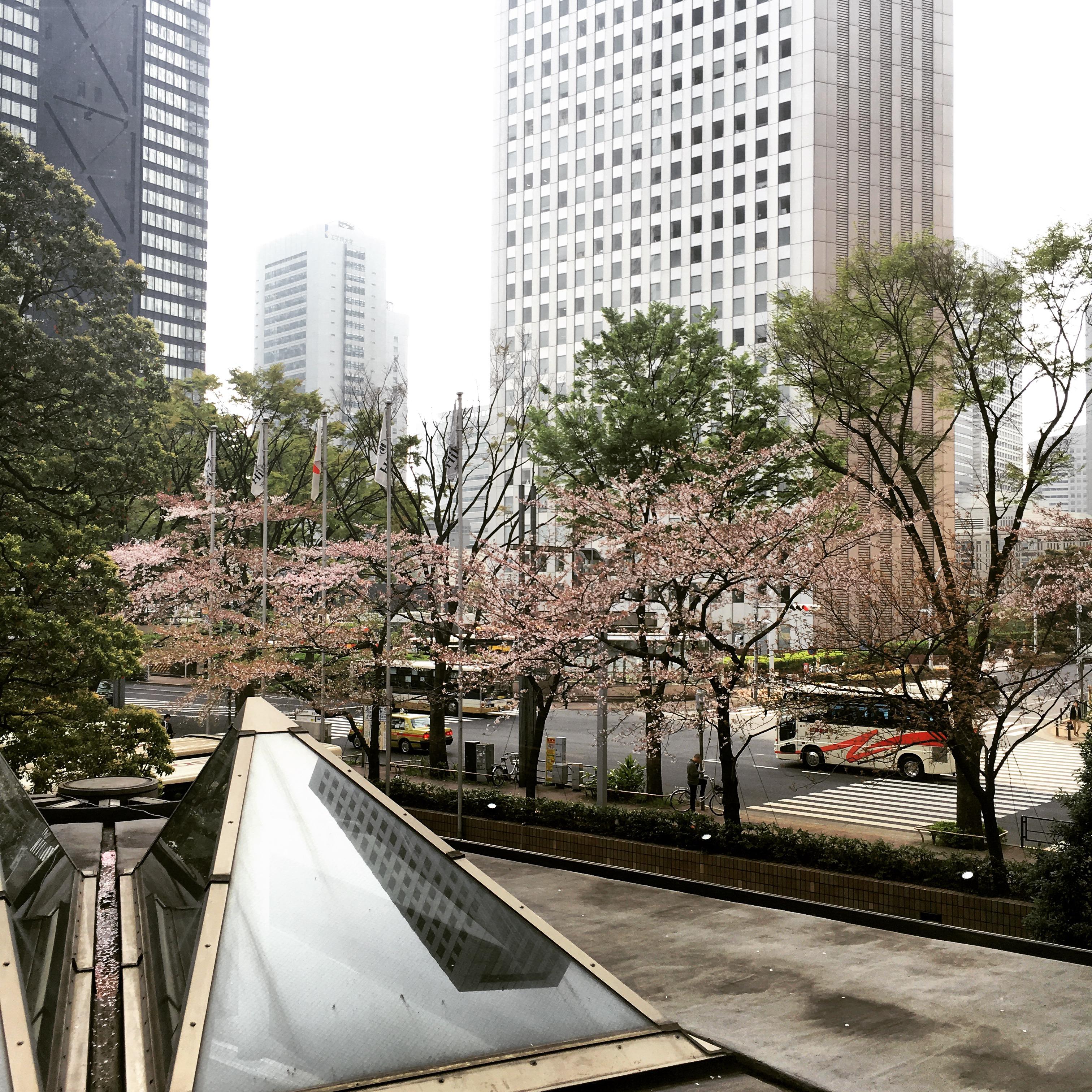 how to get to hilton odaiba from shinjuku station